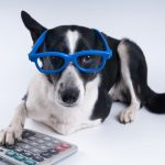 David Barnes' Under-Utilized Pet Tax Deductions